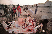 A camel slaughter at dawn in Mogadishu, the war-torn capital of Somalia. March 1992.