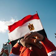 Egypt Mubarak Resignation - D.C. 2011