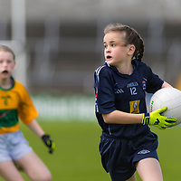 Ella Casey controls the ball in the Division 1 contest between Barefield NS and Knockanean NS in the Clare Primary Schools Ladies Football Finals at Cusack Park, Ennis, Co. Clare