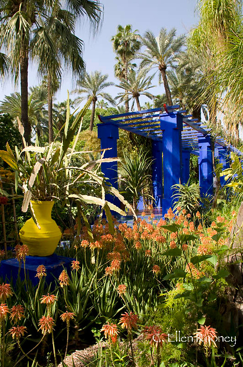 The Majorelle Garden in Marrakech, Morocco