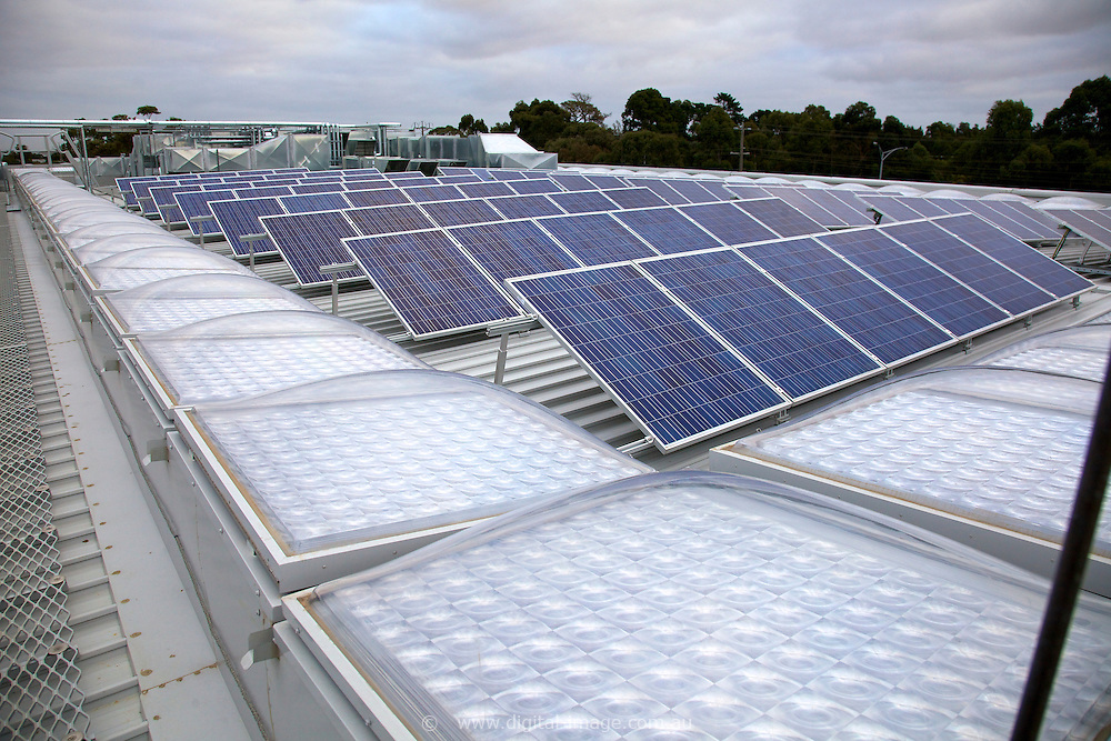 Solar panels on the National Centre for Synchrotron Science building roof.
