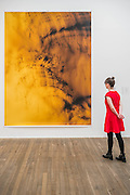 Wolfgang Tillmans: 2017. Tate Modern's new exhibition. Highlights include: large scale photographic works printed especially for this exhibition, including the four-meter tall Weed 2014 and dramatic seascapes such as The State We're In, A 2015;   New 'text and table' sculptures including Time Mirrored 3 2017, on display to the public for the first time; and slide projection Book for Architects 2014. The show is at Tate Modern from 15 February to 11 June 2017.