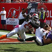 NFL Ravens/Bucs