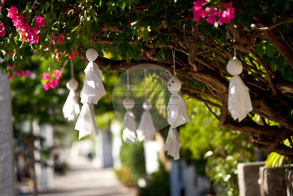 Halloween ghosts decorate a bougainvillea bush in Key West, Florida