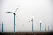 Gansu, China - 26 Feb 2010. Guazhou wind farm. China has set a target for renewable energy consumption of 40 percent of the market by the year 2050.Photographer: Markel Rendondo/Greenpeace.