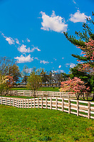 Manchester Farm, Lexington, Kentucky USA.