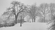 A snow storm on Cherry Hill in Central Park.