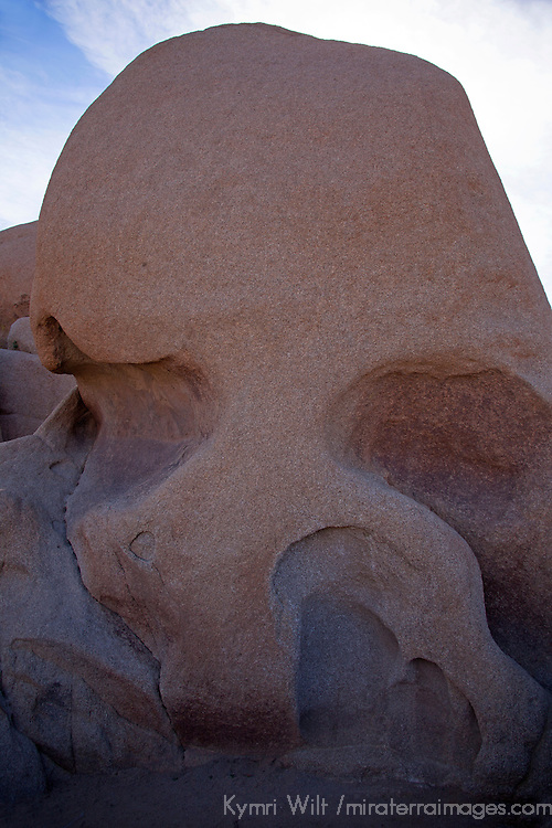 USA, California, Joshua Tree. Skull Rock formation.