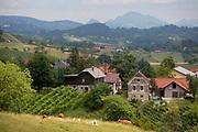 Agicultural landscape of Slovenian farms and homes in the Kozjansko Regional Park, on 24th June 2018, in Virstanj, Slovenia.
