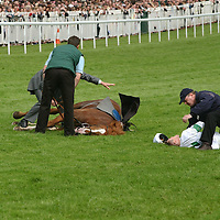 Coshocton lies fatally injured after the 2002 Derby