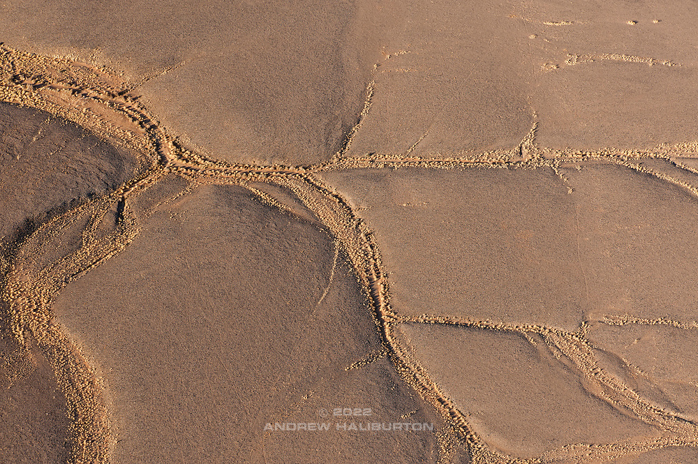 Dendritic drainage patterns on the Tsauchab Plains of the Namib Desert.  Aerial view from above the Namib-Naukluft Park near Sossusvlei in central Namibia, southwest Africa.