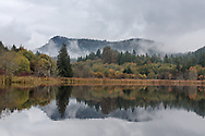 Reflections of fall foliage (and Mount Maxwell) on a rainy fall day along the shore of Blackburn Lake on Salt Spring Island, British Columbia, Canada