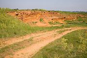 Red crag rock exposed at Buckanay Pit quarry, Alderton, Suffolk, England