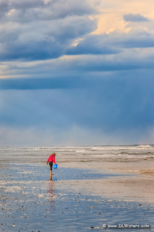Hunting for shells on a cloudy spring afternoon at the beach in Corolla, NC on the Outer Banks.