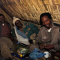 Men relaxing and chewing chat Ethiopia