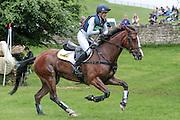 ONE TWO MANY ridden by Nicola Wilson at Bramham International Horse Trials 2016 at  at Bramham Park, Bramham, United Kingdom on 11 June 2016. Photo by Mark P Doherty.