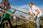 Koning Willem-Alexander en koningin Maxima aan het werk in Buurttuin Breda. Het koningspaar stak de handen uit de mouwen in het kader van NLDoet, de grootste vrijwilligersactie van Nederland.<br /> <br /> King Willem-Alexander and Queen Maxima to work in Area Garden Breda. The royal couple put up their sleeves under NLDoet, the largest voluntary action in the Netherlands.