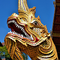 Phaya Naga at Wat Phra Singh in Chiang Mai, Thailand <br /> This Phaya Naga is one of two that guards the entrance to Viharn Luang, the main prayer hall at Wat Phra Singh.  They are said to have guarded Mount Meru, which is the center of all universes.  Others believe these giant serpent creatures still live in the Mekong River in Laos and occasionally billow large balls of flame.