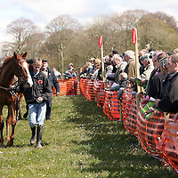 The horses are shown off in the parade ring at the first County Clare Hunt point to point in Cahergal, Newmarket-on-Fergus on Easter Sunday.<br /> Photograph by Yvonne Vaughan