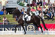 Marianne Helgstrand - Schakiro Pilekaer<br /> FEI World Breeding Dressage Championships for Young Horses 2012<br /> © DigiShots