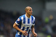Brighton striker, Bobby Zamora (25) during the Sky Bet Championship match between Brighton and Hove Albion and Wolverhampton Wanderers at the American Express Community Stadium, Brighton and Hove, England on 1 January 2016.