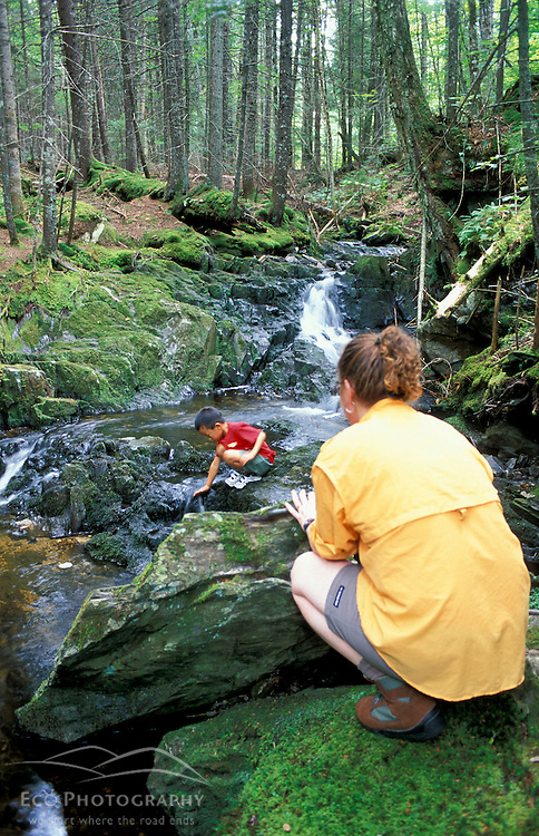 A boy and his mom explore Tolman Brook on land currently owned by Hancock Timber.  Northern Forest. Paul Stream Watershed (CT River.)  Granby, VT