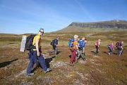 Høsten 2008 gikk Marit Østby Nilsen (bakerst) akkurat samme veg med en fjellrev i bur på ryggen. Da var hun rovviltkontakt for SNO i Tydal og var blant bærerne som fraktet fem fjellrevvalper inn i Sylan for utsetting. Snart syv år etter går hun samme ruta sammen med elever fra Brekken oppvekst- og lokalsenter i Røros. De er landets første skoleelever som får lov til å bli med ut for å se fjellrev i naturen og hvor vellykket redningsaksjonen for fjellreven har blitt. I bakgrunnen fjellet Bandaklumpen.