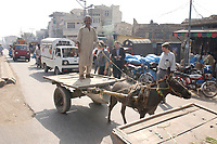 19 OCT 2001, RAWALPINDI/PAKISTAN:<br /> Ein Mann mit seinem Eselskarren auf dem Weg durch den verkehr einer Hauptstrasse von Rawalpindi in der Naehe von Islamabad<br /> IMAGE: 20011019-02-012