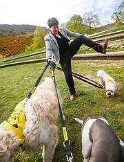 Holyrood Dog of the Year |  Edinburgh | 8 May 2017