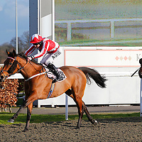 Wishformore and Tom Queally winning the 2.50 race
