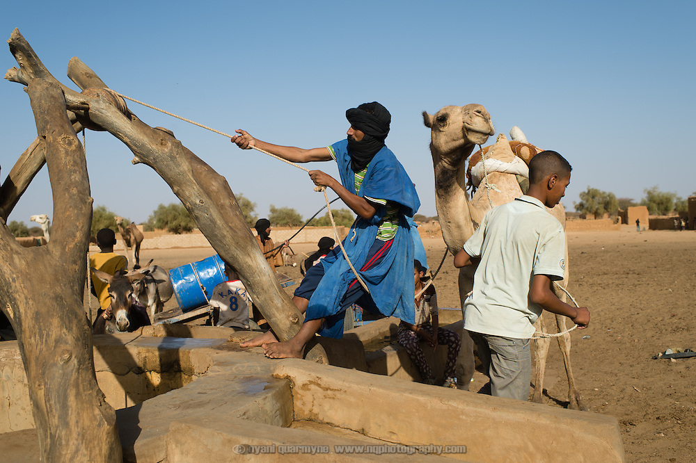 Watering livestock at a deep well in Bassikounou, Mauritania where a camel is used to haul up the bucket of water. 7 March 2013.