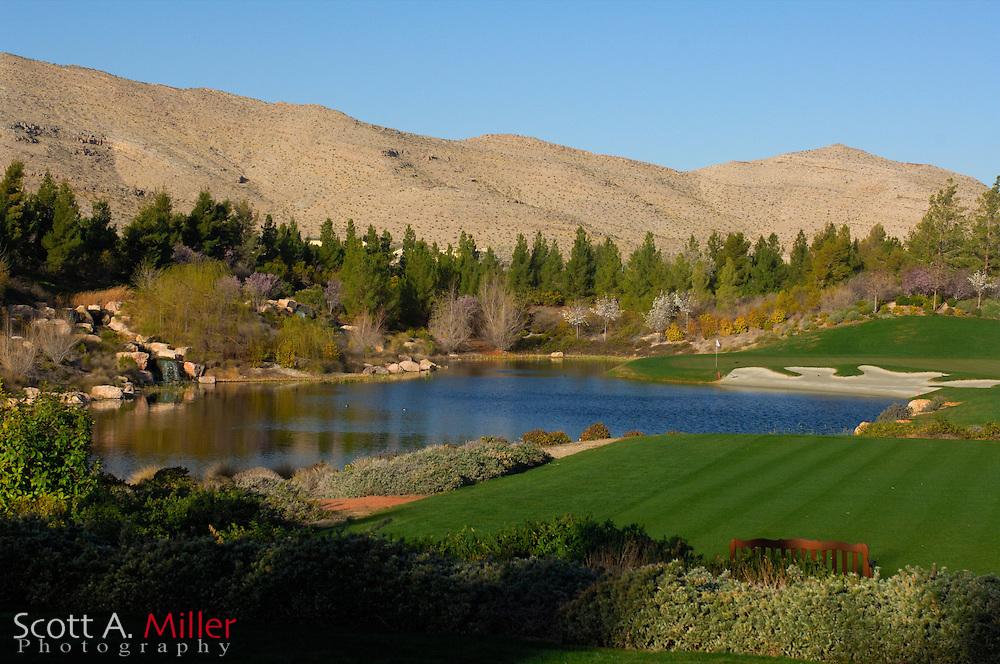 Southern Highlands Golf Club Hole No. 8..                ©2006 Scott A. Miller