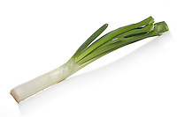 Close-up of leek on white background