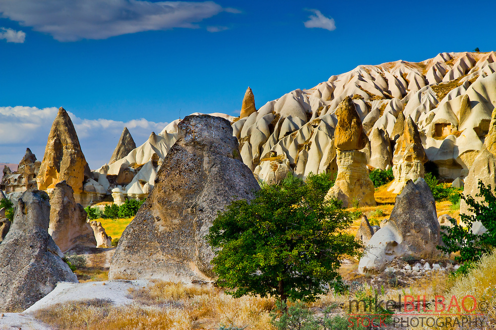Fairy chimneys.  Cappadocia Region. Nevsehir province. Turkey