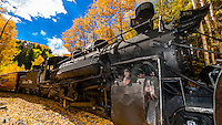 Coal fired steam locomotive surrounded by a grove of aspen trees in peak autumn color near Calico, CO.  on the Cumbres & Toltec Scenic Railroad train on the 64 mile run between Chama, New Mexico and Antonito, Colorado. The railroad is the highest and longest narrow gauge steam railroad in the United States with a track length of 64 miles. The train traverses the border between Colorado and New Mexico, crossing back and forth between the two states 11 times. The narrow gauge track is 3 feet wide. It runs over 10,015 ft (3,053 m) Cumbres Pass.