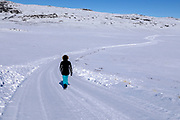 a person walking on a snowy road