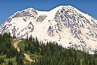 Mount Rainier and High Hut of the Mount Tahoma Trails in the Tahoma State Forest, Cascade Mountain Range, WA USA.