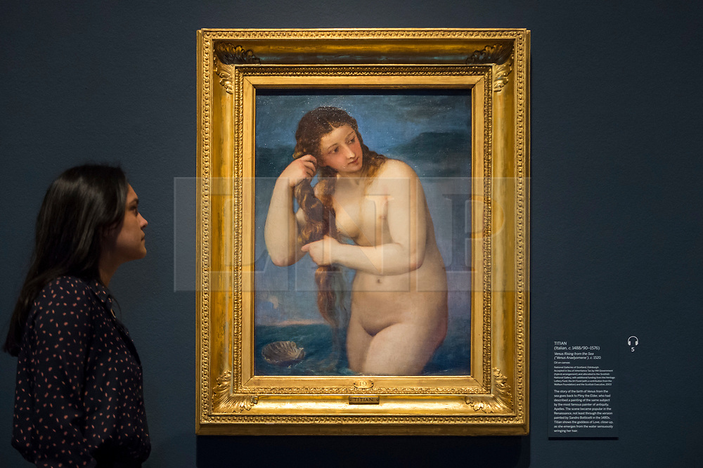 """© Licensed to London News Pictures. 28/02/2019. LONDON, UK. A staff member views """"Venus Rising from the Sea (Venus Andyomene)"""" c1520 by Titian. Preview of """"The Renaissance Nude"""", an exhibition at the Royal Academy of Arts in Piccadilly of 90 works examining the emergence of the nude in European art.  Works by artists including Leonardo da Vinci to Michelangelo are on display in the Sackler Galleries 3 March to 2 June 2019.  Photo credit: Stephen Chung/LNP"""