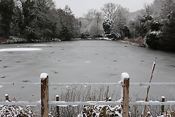 © Licensed to London News Pictures. 01/02/2019. London, UK. Frozen ponds on Hampstead Heath, north London, after snow fell overnight. Photo credit: Rob Pinney/LNP
