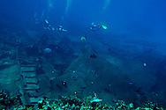 Debris Field, Oro Verde, Shipwreck, Grand Cayman