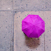 A person walking down a New York City Street with a purple umbrella during a rainy day