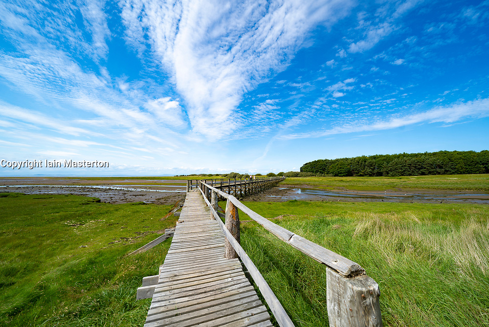 Wooden walkway leading to nature Reserve at Aberlady in East Lothian, Scotland UK