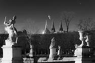 France. Paris. 1st district. Tuileries garden.  . sculptures in winter , Paris  France / sculptures dans le jardin des tuileries en hiver