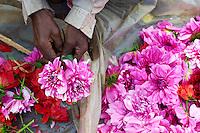 Inde, Bengale Occidental, Calcutta (Kolkata), le marche aux fleurs // India, West Bengal, Kolkata, Calcutta, Mullik Ghat flower market