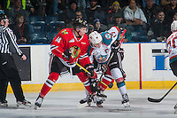 KELOWNA, CANADA - JANUARY 21:Jake Gricius #14 of the Portland Winterhawks checks Rodney Southam #17 of the Kelowna Rockets during first period on January 21, 2017 at Prospera Place in Kelowna, British Columbia, Canada.  (Photo by Marissa Baecker/Shoot the Breeze)  *** Local Caption ***