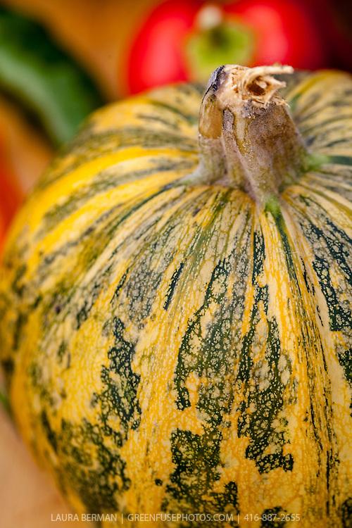 Heirloom pumpkin  on a harvest table.