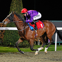 Flying Tempo and Graham Lee winning the 8.00 race