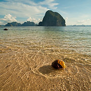Coconut washed onto tropical beach in ElNido, Palawan, Philippines