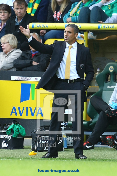 Picture by Paul Chesterton/Focus Images Ltd +44 7904 640267.29/09/2012.Norwich Manager Chris Hughton during the Barclays Premier League match at Carrow Road, Norwich.