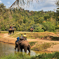 Riding Elephants Along Forest Road in Hang Chat, Thailand<br />